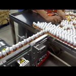 10 hoveder automatisk vakuum automatisk parfumeudfyldningsmaskine
